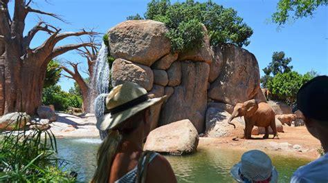El Bioparc ofrece más actividades gratuitas y amplía su ...
