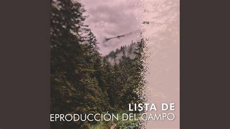 El Bosque está Vivo con el Canto de Los Pájaros   YouTube