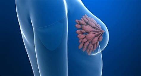 El cáncer de mama triple negativo, el más agresivo, podría ...
