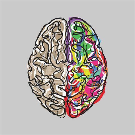 El Cerebro Creativo Con Color Frota Ligeramente Vector ...