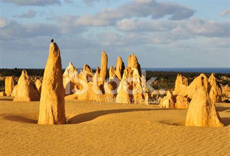El Desierto DE Los Pináculos, Australia Occidental ...