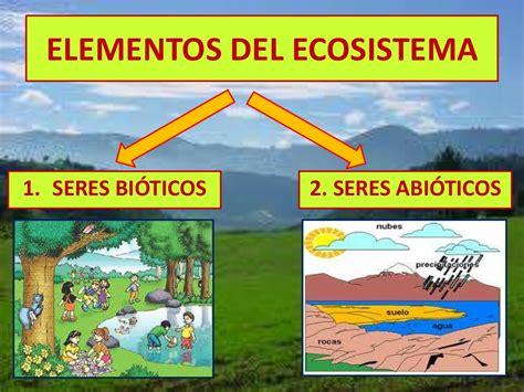 El ecosistema explicado para niños.