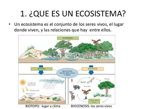 El ecosistema fluvial
