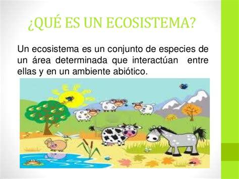 El ecosistema y sus componentes