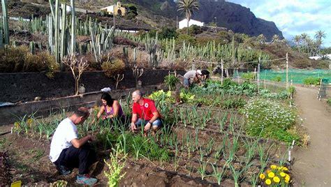 El Gobierno de Canarias concede los 12,6 millones ...