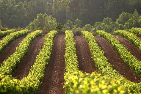 El Gobierno de La Rioja abonará 12,6 millones de euros de ...