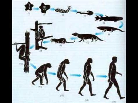 El inicio de la teoría de la evolución   YouTube