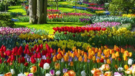 El jardín de flores más bonito del mundo