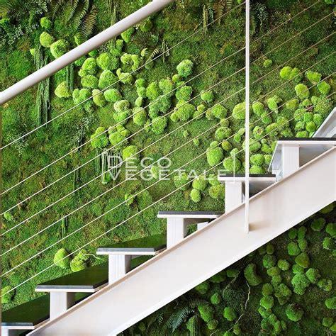 El muro vegetal estabilizado   Déco Végétale   100% ...