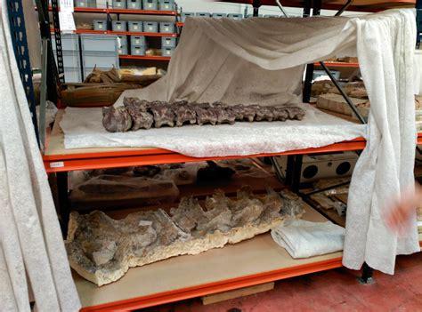 El neutrino: Los fósiles de Lo Hueco