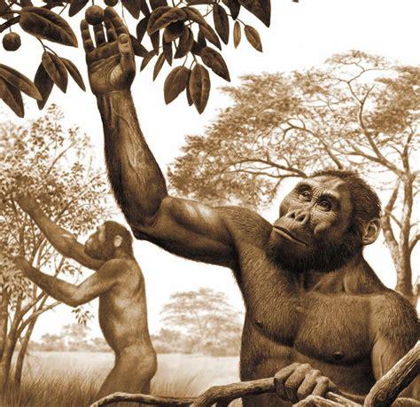 El origen de la vida y su evolución  X : evolución de los ...