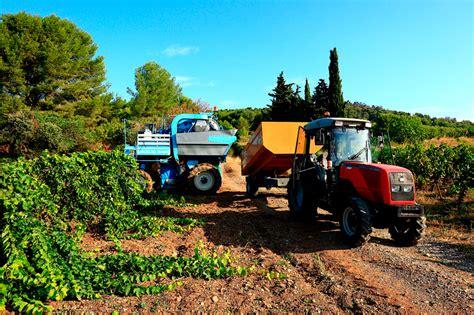 El paro en el sector agrícola bajó un 5% en España en ...