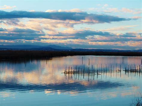 El Parque natural de la Albufera en grave peligro   Valenc ...