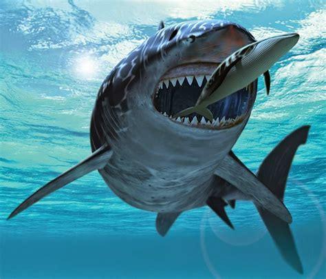 El Pensieve de Dinorider:  Cetotéridos al Pisco ...