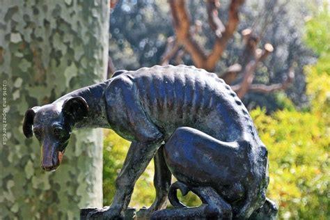 El perro abandonado · Zoo de Barcelona | Perros ...