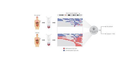 El primer análisis de sangre que es capaz de detectar 50 ...