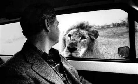 El Rioleón Safari se'n va a Amèrica | Catalunya | EL PAÍS ...