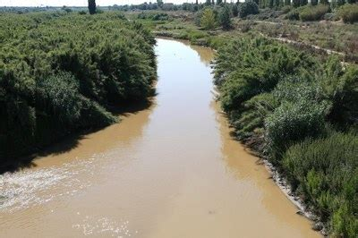 El riu Llobregat   Ajuntament de Cornellà