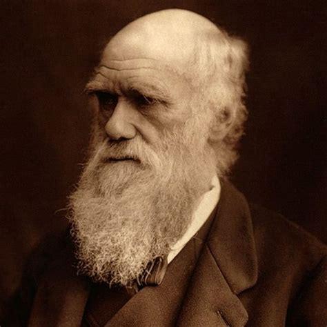 """El """"abominable misterio"""" que desconcertó a Charles Darwin ..."""