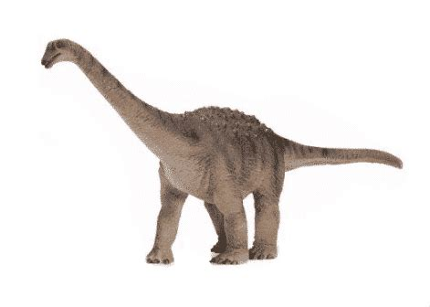 El Saltasaurus: el dinosaurio con una espalda hecha de púas