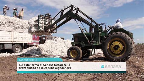 El Senasa facilita trámites para el Registro Fitosanitario ...