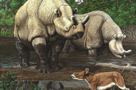 El siguiente período es el Eoceno  hace 60 millones de ...