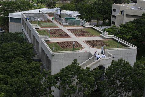 El Techo Verde de la UCAB ya es una realidad y está ...