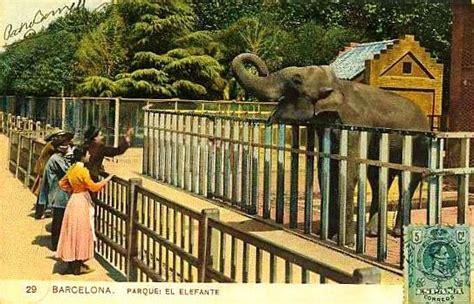 El Tranvía 48: A los 125 años del Zoo de Barcelona: una ...