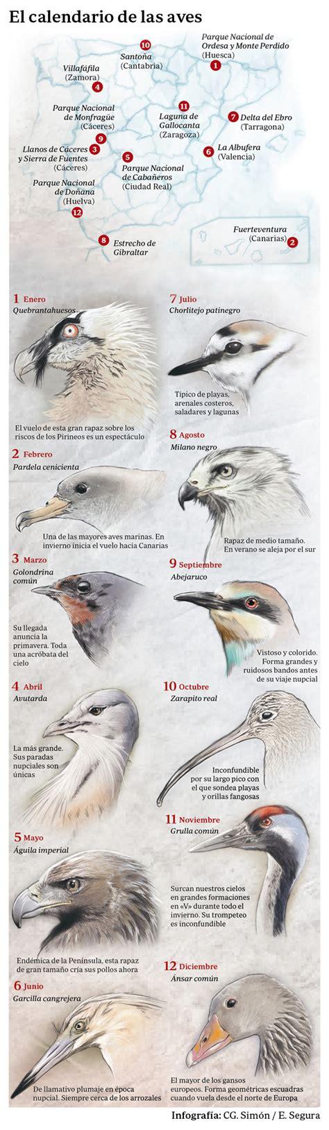 El turismo de observación de aves lucha por levantar el vuelo