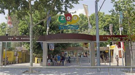 El Zoo de Barcelona obté un 7,8 per part dels visitants ...