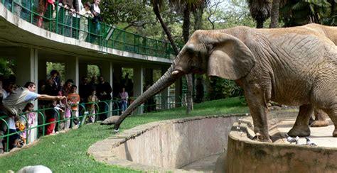 El Zoo de Barcelona podría cerrar de forma definitiva ...