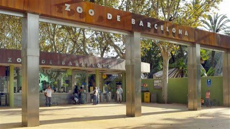 El Zoo de Barcelona reabre sus puertas al público