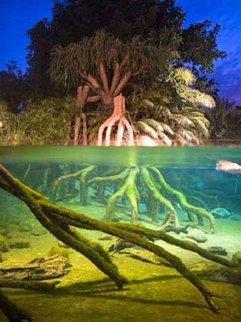 El Zoo de Fuengirola renueva su imagen   Málaga es Cool!