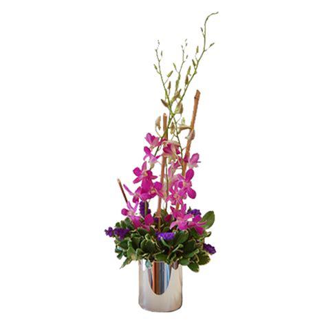 Elegant Dendros Flower Delivery in Pahrump | Something ...