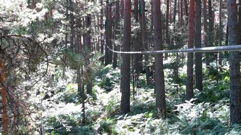 eljodidosueco en los árboles! Aventura Amazonia Cercedilla ...