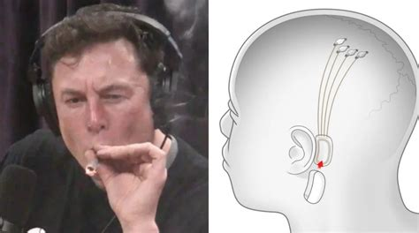 Elon Musk Says People Will Eventually Consume Music ...