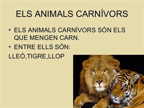 Els animals carnívors,hervívors i omnívors