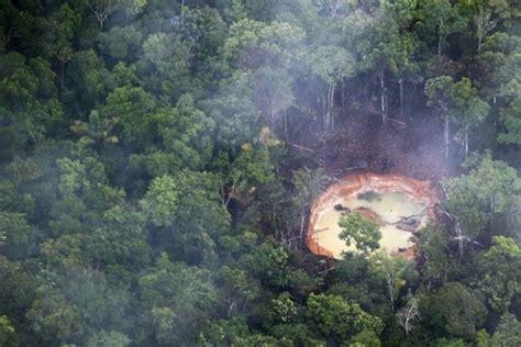 Em 9 países, floresta amazônica perdeu 240 mil km² de 2000 ...