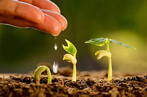 Emerging Agriculture Hackathon   News   Arts & Science ...