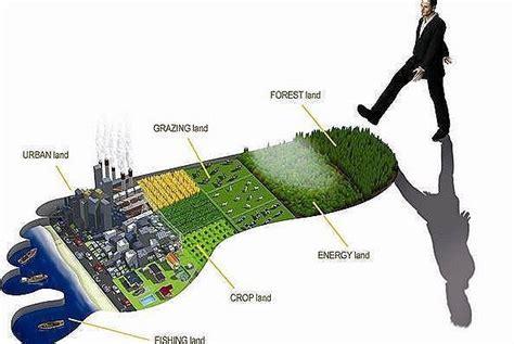 Empresas que trabajan para reducir la huella ambiental ...