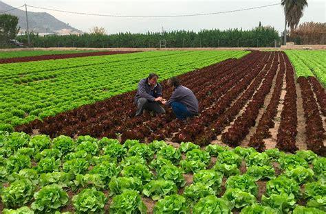 En 2030, acabaremos con la agricultura y tendremos comida ...