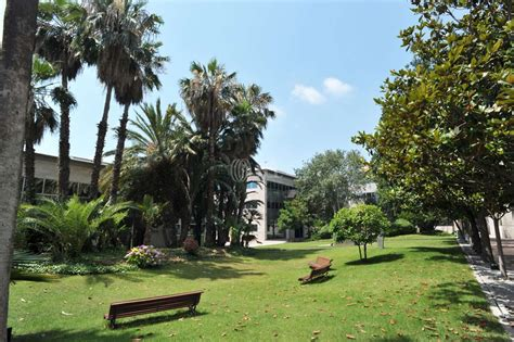 En alquiler de Oficina en CITY PARC   EDIFICIO ROMA ...