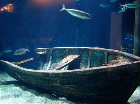 En el fondo del mar | fotos de Concurso  La Foto del ...