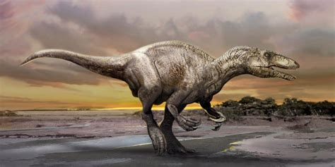 Encuentran huellas de dinosaurios por primera vez en ...