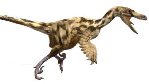 Encuentran los primeros huevos de dos especies de dinosaurios