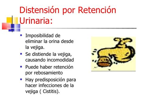 Ene 211 Nec.Eliminacion Urinaria 2009