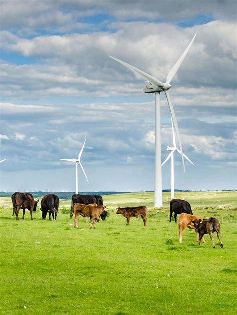 Energías renovables en el sector agrario   Fórmate
