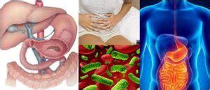 Enfermedades Gastrointestinales: ¿Qué son? Signos ...