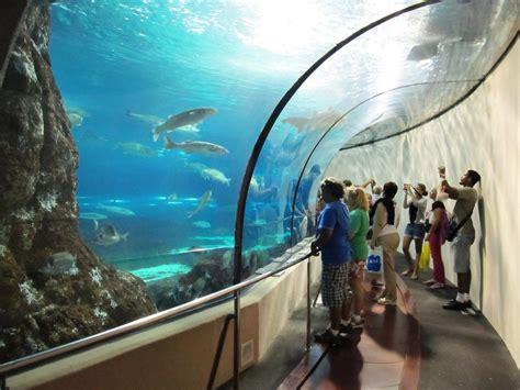 Entrada al Aquarium de Barcelona | Sitges Área   Costa del ...