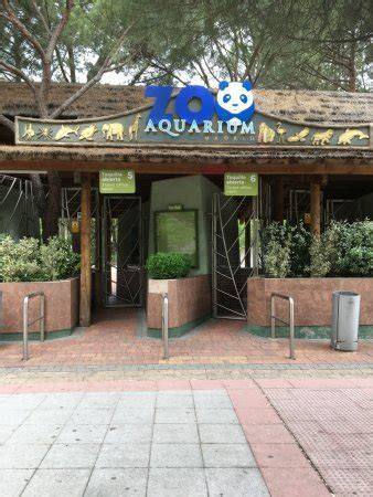 Entrada Zoo De Madrid   SEONegativo.com